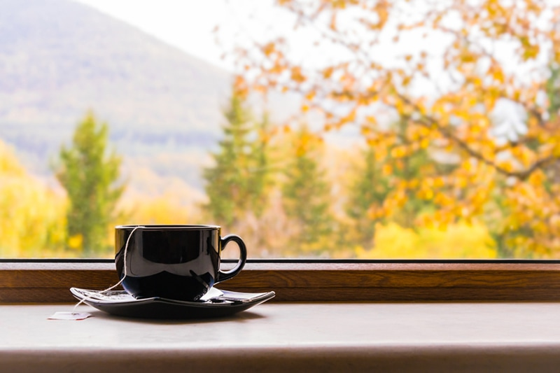 A cup of tea in front of a window with fall view.
